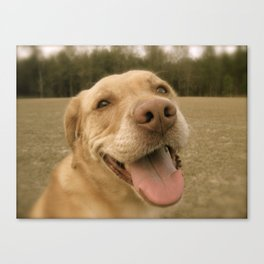 Dog Gone Happy Canvas Print