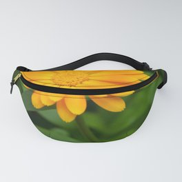 Yellow flower calendula officinalis and green leaves on background Fanny Pack