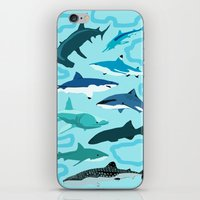 sharks iPhone & iPod Skins featuring Sharks by Raffles Bizarre