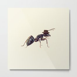 Ant with a Cowboy Hat Metal Print
