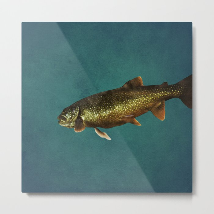 Trout on Teal Blue Metal Print