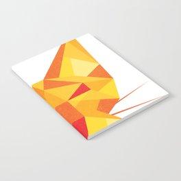Geometricat Notebook