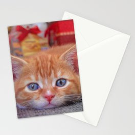 Cleo the Christmas Cat Stationery Cards