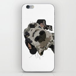 Great Dane dog in your face iPhone Skin