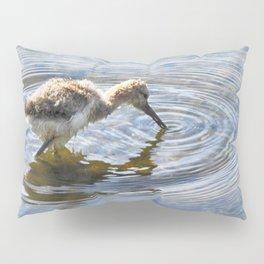 American Avocet Chick Pillow Sham