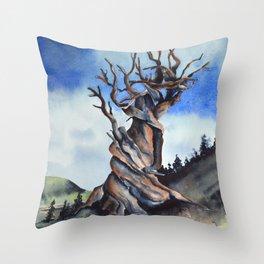 Bristlecone Throw Pillow