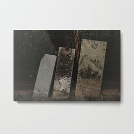 Hidden 1 Metal Print
