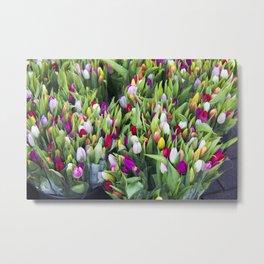 Danish Tulips Metal Print