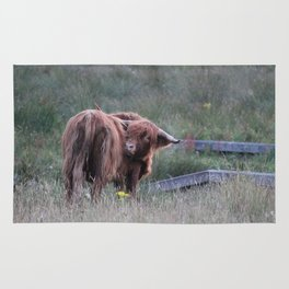 Highland Cow Scratching Itself Rug