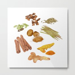 Watercolor Illustration of a set of spices Metal Print