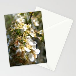 fairy land Stationery Cards