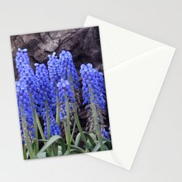 Dance of Spring Stationery Cards