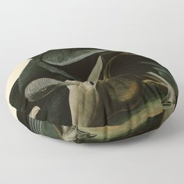 106 Black Vulture or Carrion Crow Floor Pillow