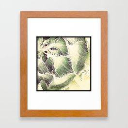 FLOWER 004 Framed Art Print