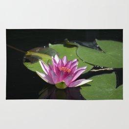 Longwood Gardens - Spring Series 285 Rug