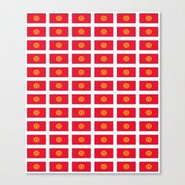 flag of Kyrgyzstan -Kirghizia,Кыргызстан, Киргизия,Кыргыз, Kyrgyzstani,Kyrgyz,Bishkek Canvas Print