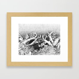 Transitions in nature part 2 Framed Art Print