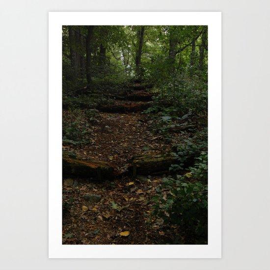 Stairs in Wonderland Art Print