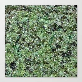 Raw Peridot Canvas Print