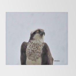 Osprey Throw Blanket