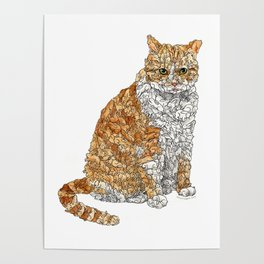 Tabby Bunny Kitty Poster