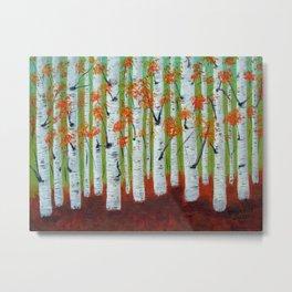 Atumn Birch trees - 5 Metal Print
