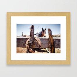 Horsehoe Blur Framed Art Print