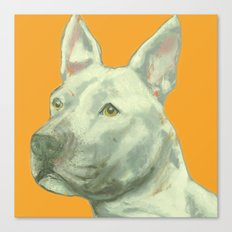 Pittbull printed from an original painting by Jiri Bures Canvas Print