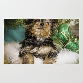 Tiny Yorkie Puppy in a Green Basket underneath a Christmas Tree Rug