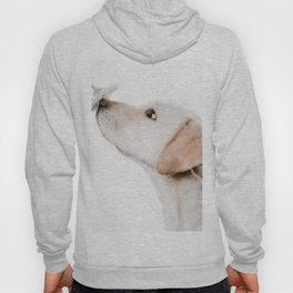 smell this Hoody