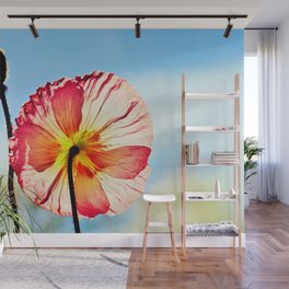 Poppy in Backlight I Wall Mural