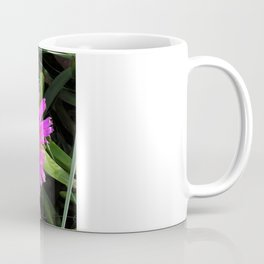 Pink Mesembryanthemum Coffee Mug