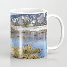 Nice Digs Coffee Mug