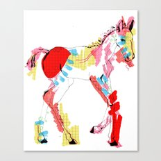 Baby horse colour Canvas Print