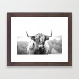 Highland Cow Longhorn in a Field Black and White Framed Art Print