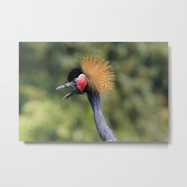 Oh my goodness Metal Print