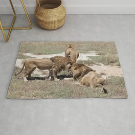 Male Lions Rug
