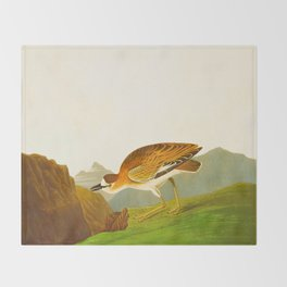 Rocky Mountain Plover Bird Throw Blanket