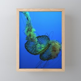 Jellyfish Framed Mini Art Print