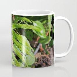 Seeking Salvation Coffee Mug
