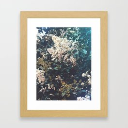 Amongst the Myrtle Tree Framed Art Print