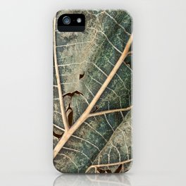 Organic Decay iPhone Case