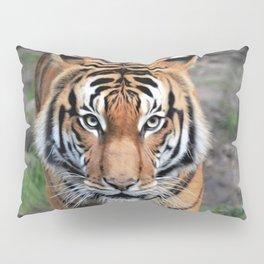 The Bengal Tiger Pillow Sham
