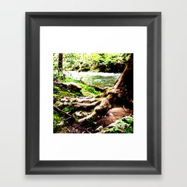 The Foot of Nature Framed Art Print