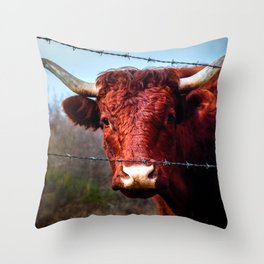 Highland Cow Longhorn Color Barded Wire Fence  Throw Pillow