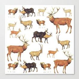 Deers Pattern Canvas Print
