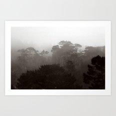 Fog Gradient Art Print