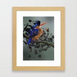 Kungsfiskare Framed Art Print