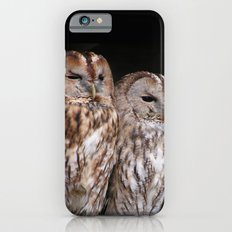 Tawny Owls in Nature iPhone 6s Slim Case