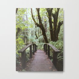 Trail to Toketee Falls Metal Print